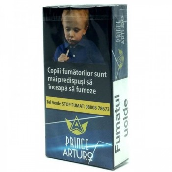 Tigari de foi cu filtru - Prince Arturo Mini Cigarillos (10)